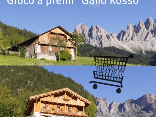 """Vinci 1 settimana di """"vacanza al maso"""" in Alto Adige"""